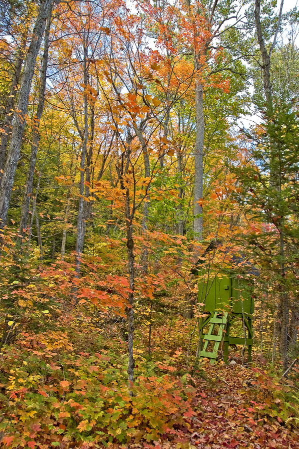 Fairy do outono fotografia de stock