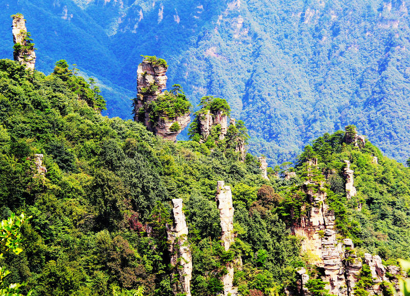 Download Fairy Flowers In Tianzi Mountain Stock Image - Image of view, fairy: 27355277