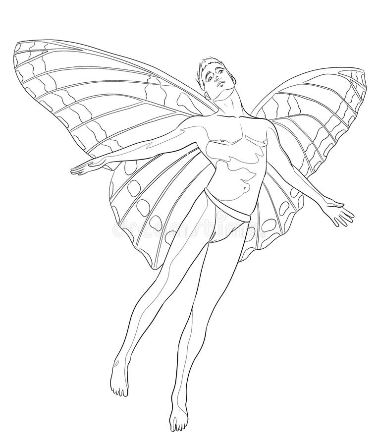 Contour Line Drawing Butterfly : Fairy man coloring page stock illustration image of
