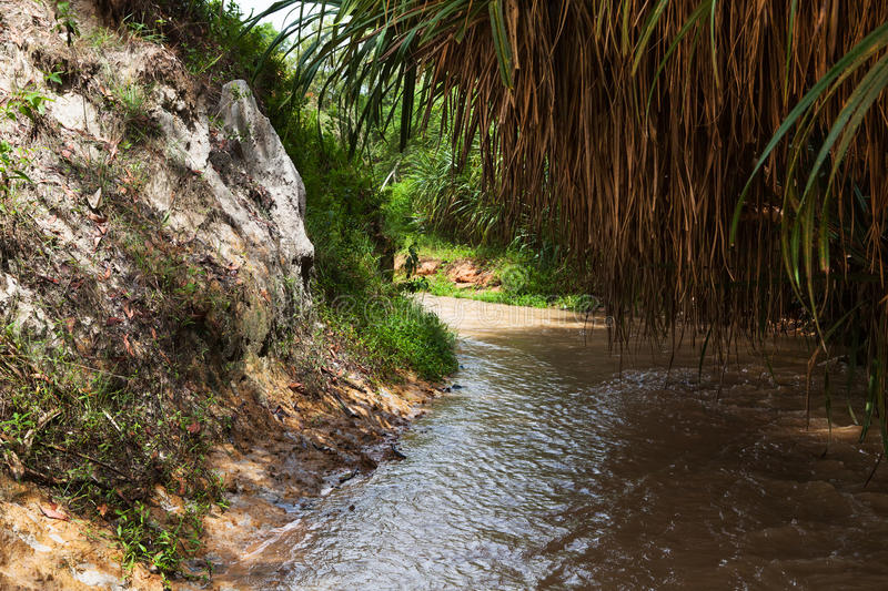 Fairy Stream Canyon. Mui Ne. Vietnam stock images