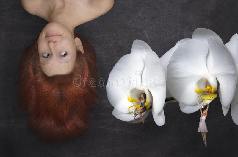 Download Fairy tale stock photo. Image of attractive, innocence - 26594512