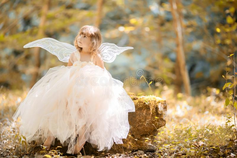 Fairy tale consept. Little toddler girl wearing beautiful princess dress with fairy wings royalty free stock photo