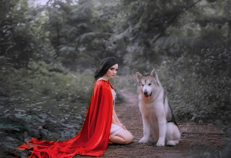 Fairy tale about red cap, dark-haired girl on ground in thick forest in short white light dress, long scarlet cloak royalty free stock image