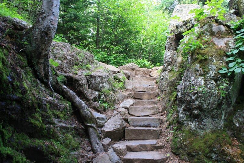 Fairy trail royalty free stock photo