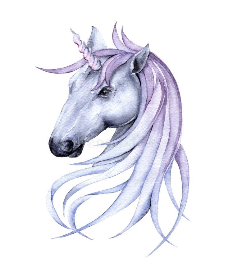 Fairy unicorn. Isolated on white background. stock images
