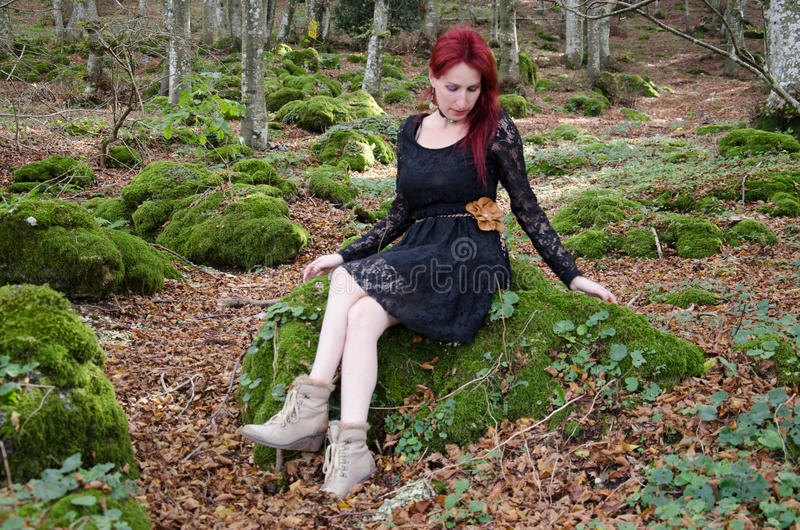 Fairy in the woods royalty free stock photography