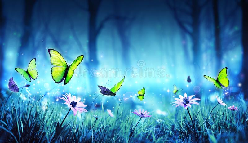 Fairy Butterflies In Mystic Forest stock images