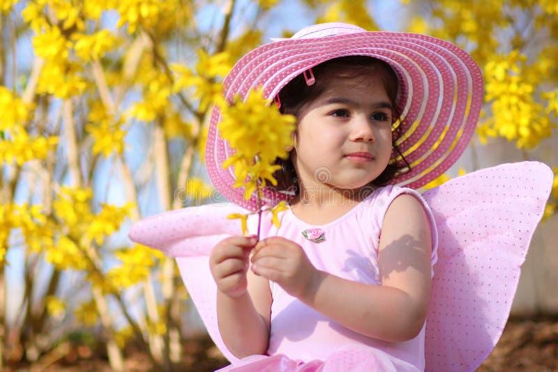 fairy5 wiosna zdjęcie stock