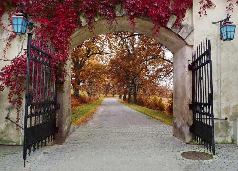 Fairyland в заречье Cesis, Латвия стоковая фотография