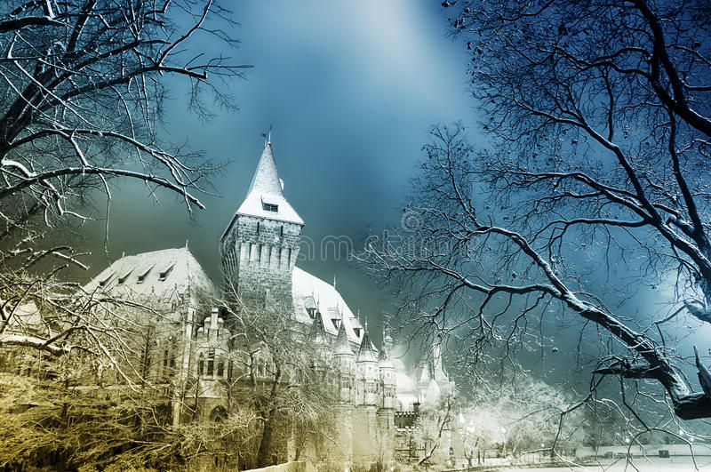 Fairytale castle at night stock images
