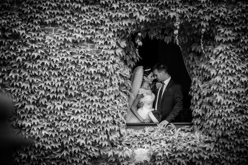 Fairytale newlywed romantic couple of valentynes posing in a n o stock image