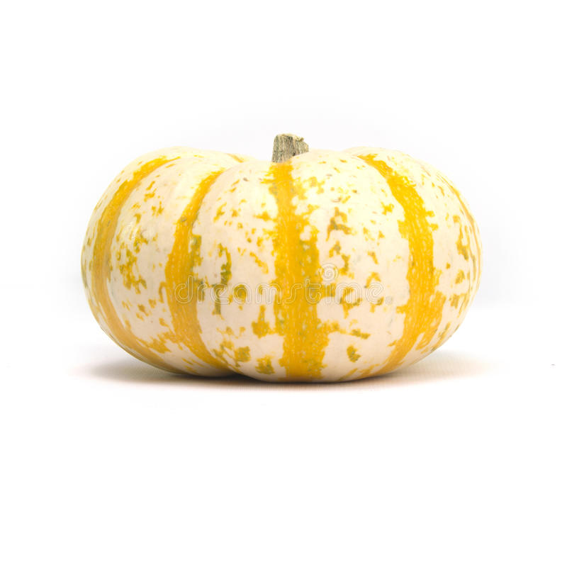 Fairytale Pumpkin. Single fairytale pumpkin on white background with light shadow stock images