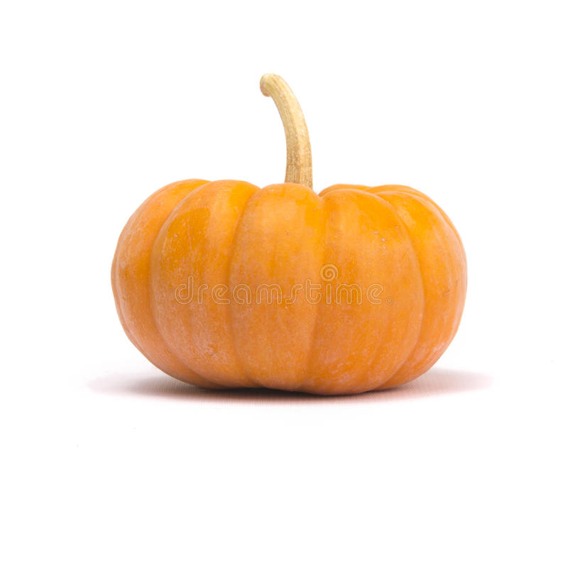 Fairytale Pumpkin. Single fairytale pumpkin on white background with light shadow royalty free stock image