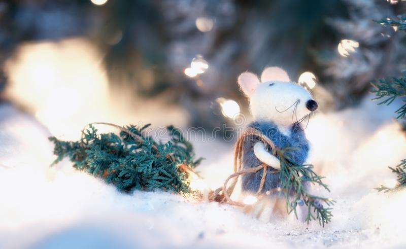 A fairytale rat in a fur coat carries a Christmas tree from a magical fairytale forest lit by lanterns. Magical New Year Christmas royalty free stock photos