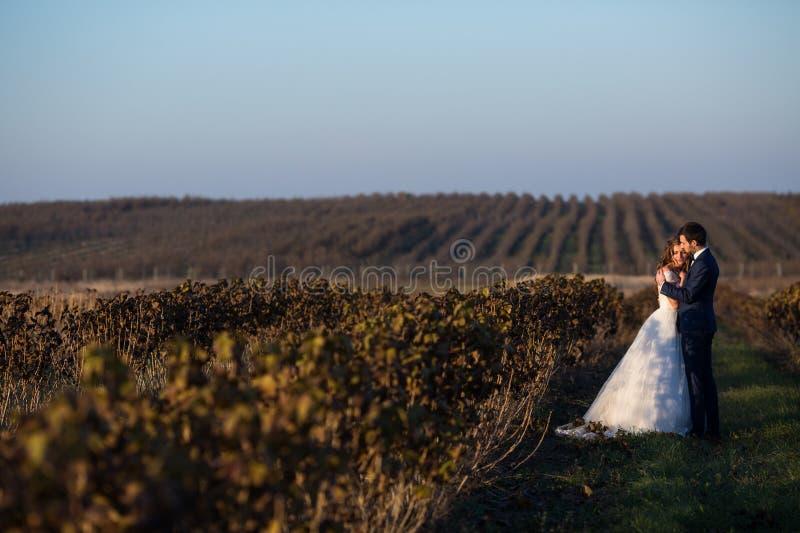 Fairytale romantisch paar van jonggehuwden het koesteren stock afbeelding