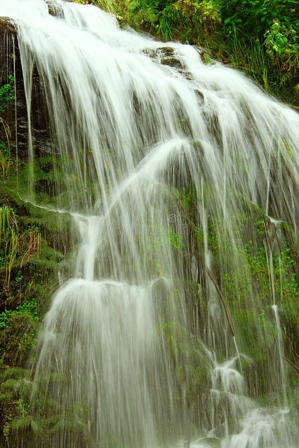 Free Fairytale Waterfall In The Black Forest Germany Feldberg. Stock Photo - 43637070