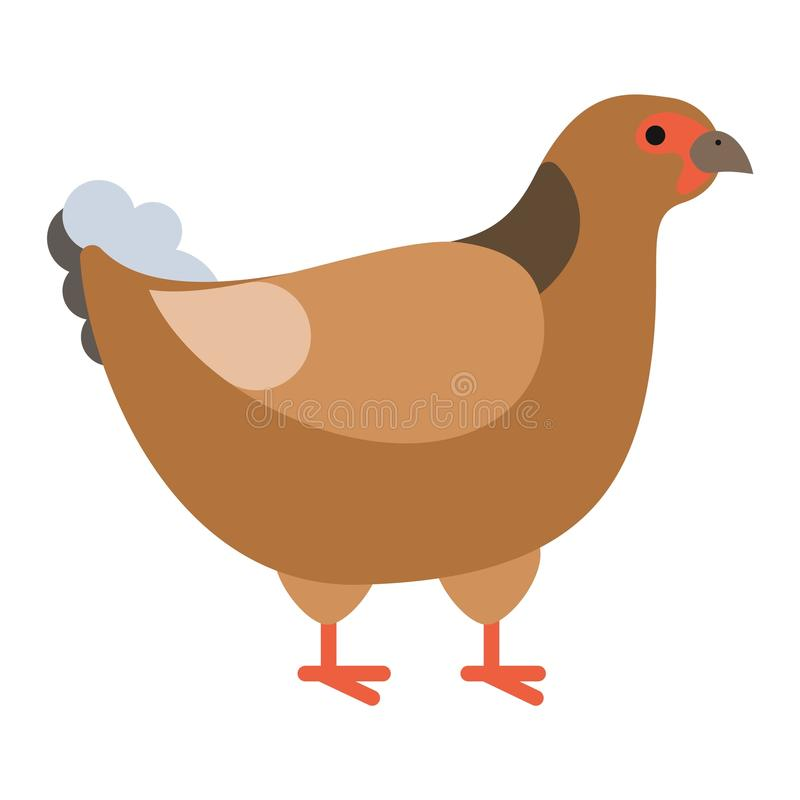 Faisán salvaje pheasan libre illustration