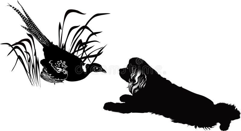 Faisão e cães do pássaro ilustração stock