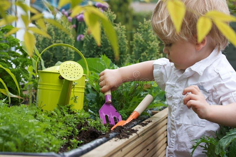 fait du jardinage l'enfant en bas âge images libres de droits