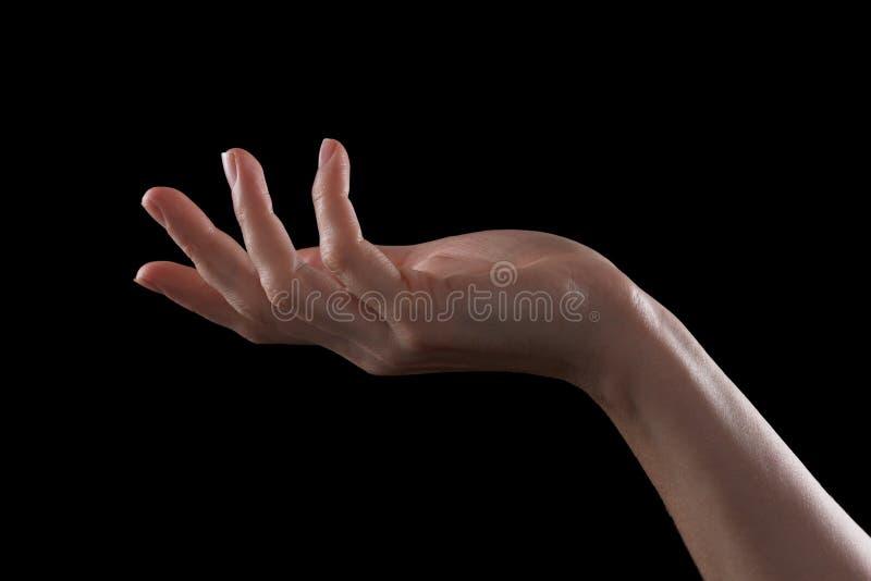 Faites des gestes la belle main d'une jeune fille, paume s'ouvrent photo libre de droits