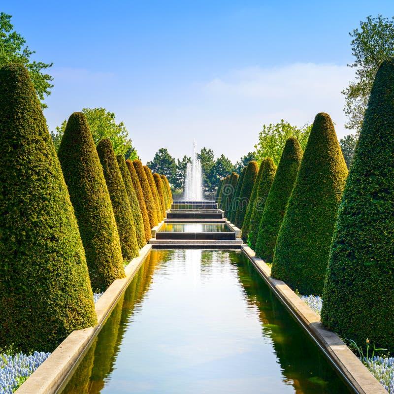 Faites du jardinage dans Keukenhof, lignes coniques de haies, piscine d'eau et fontaine. Pays-Bas images libres de droits
