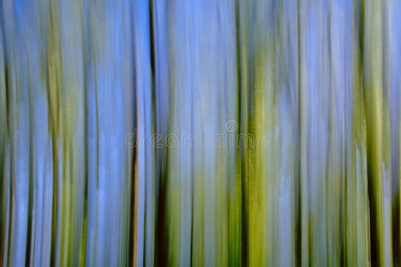Faites signe le fond brouillé avec les lignes verticales en vert, brun et bleu images libres de droits