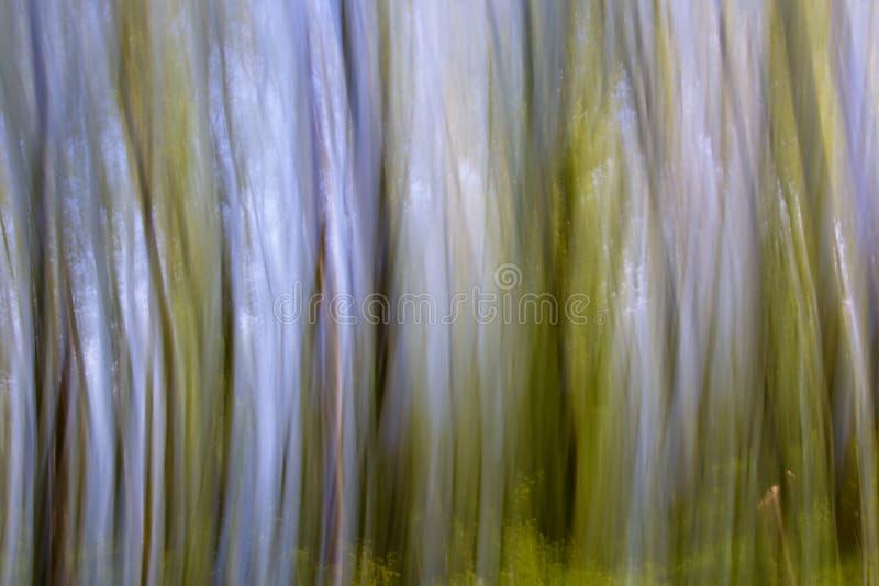 Faites signe le fond brouillé avec les lignes verticales incurvées en vert, brun et bleu photographie stock libre de droits