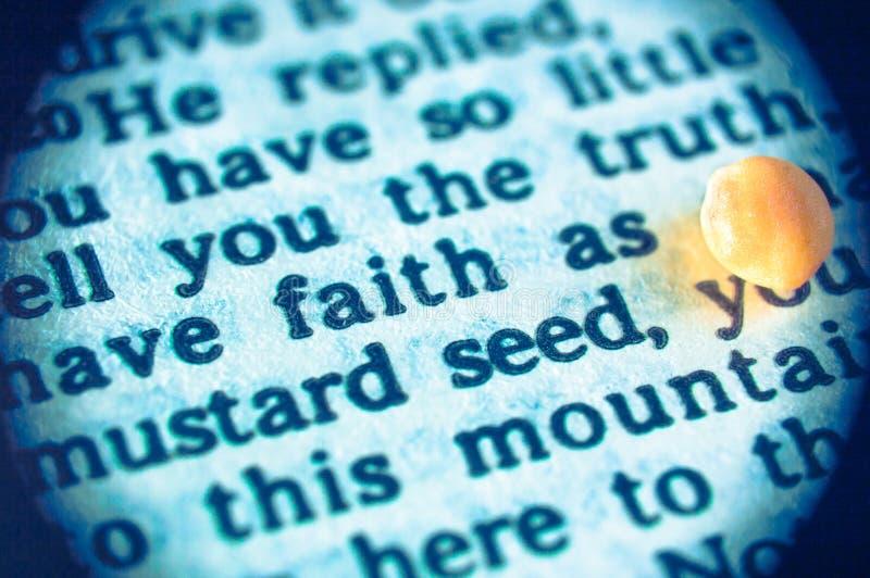 Faith as mustard seed stock photography