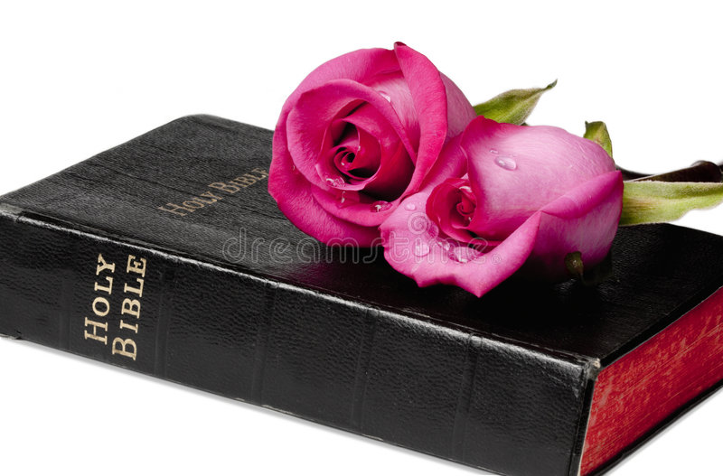 Download Faith and Romance stock photo. Image of holy, bible, pray - 7820322