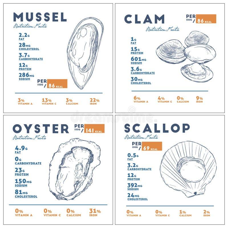Faits de nutrition de vecteur de croquis d'aspiration de main de moule, de palourde, d'huître et de feston illustration stock