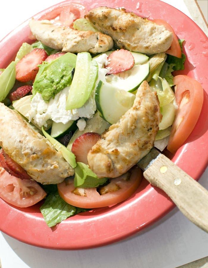 Faixa da galinha da fruta da salada do jardim foto de stock royalty free