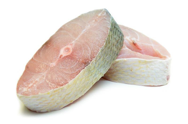 Faixa de peixes do Threadfin isolada imagem de stock