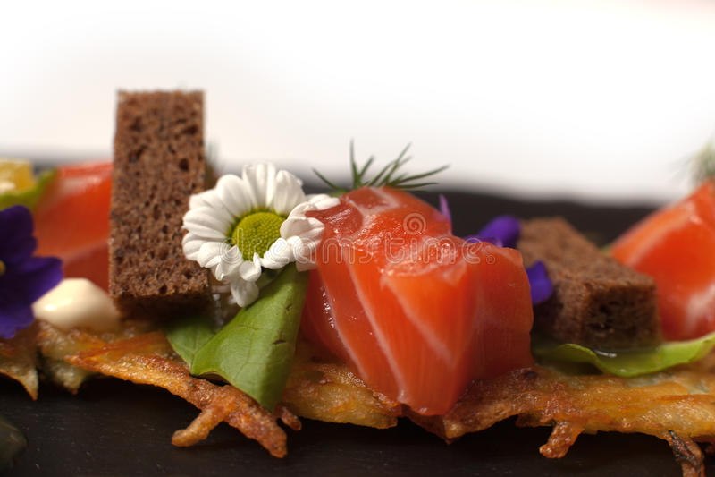 Faixa Salmon,   fotografia de stock