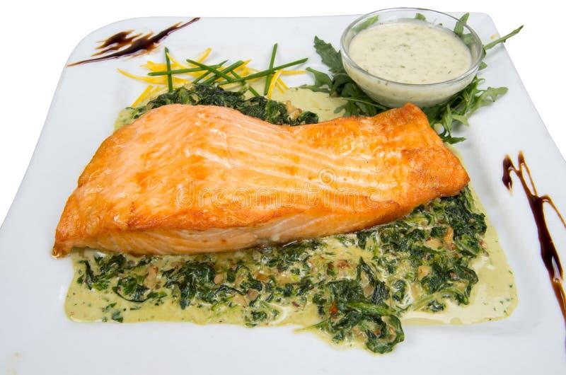 Faixa Salmon com molho dos espinafres e da noz fotos de stock