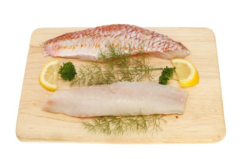 Faixas do salmonete vermelho fotografia de stock royalty free