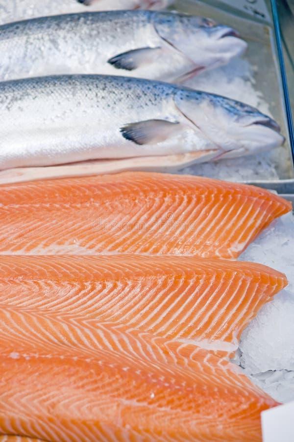 Download Faixas Salmon imagem de stock. Imagem de corpo, cinzento - 29840831