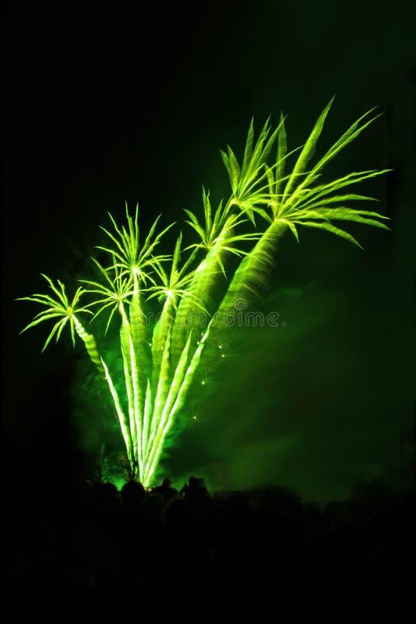 fajerwerki lubią palmy obraz stock