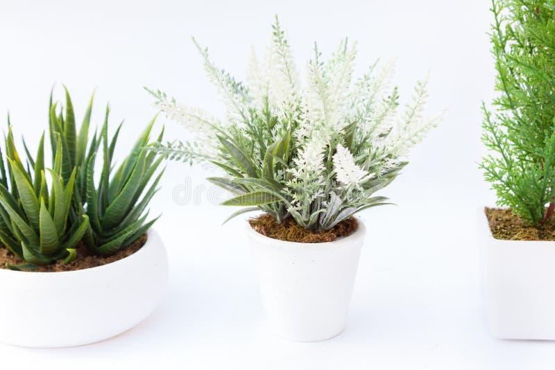 Fake flower. Three Fake flower with vase on white background royalty free stock photos