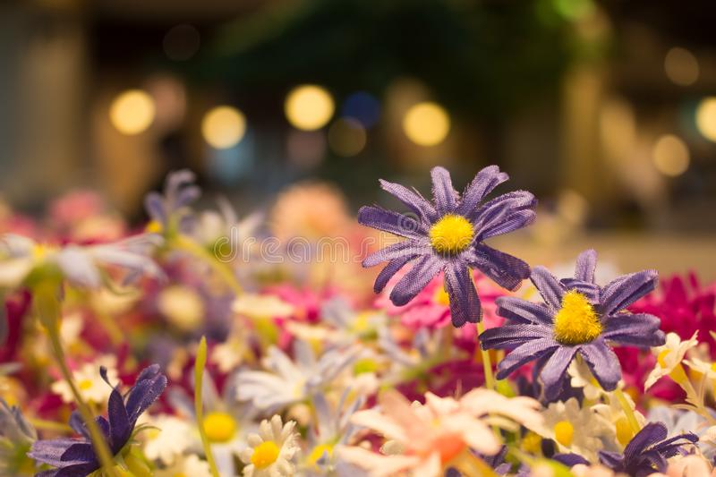 Fake purple flower with bokeh of lamp for background stock images