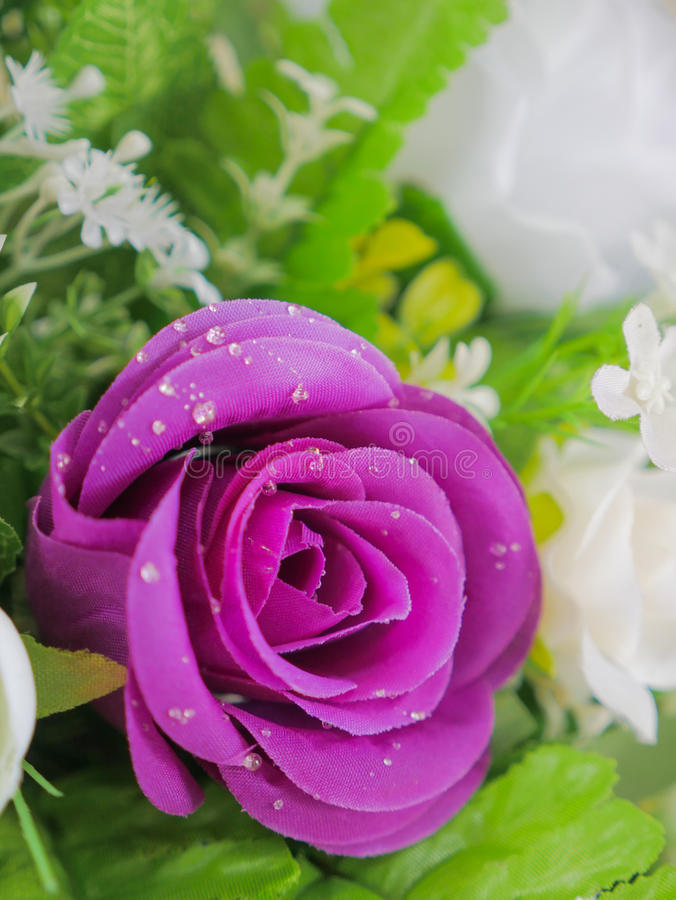 Fake purple rose flowers with artificial water drop. Elegant and beautiful fake purple rose flowers with artificial water drop royalty free stock photos
