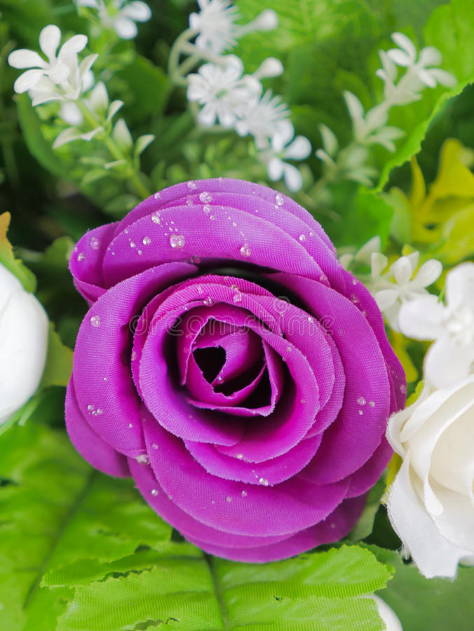 Fake purple rose flowers with artificial water drop. Elegant and beautiful fake purple rose flowers with artificial water drop royalty free stock images