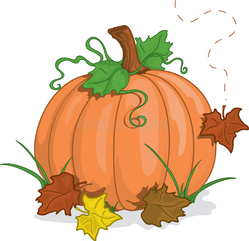 Fal pumpkin stock illustration