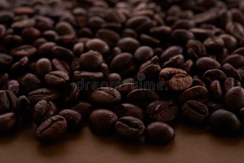 Fala kawowe fasole obraz stock