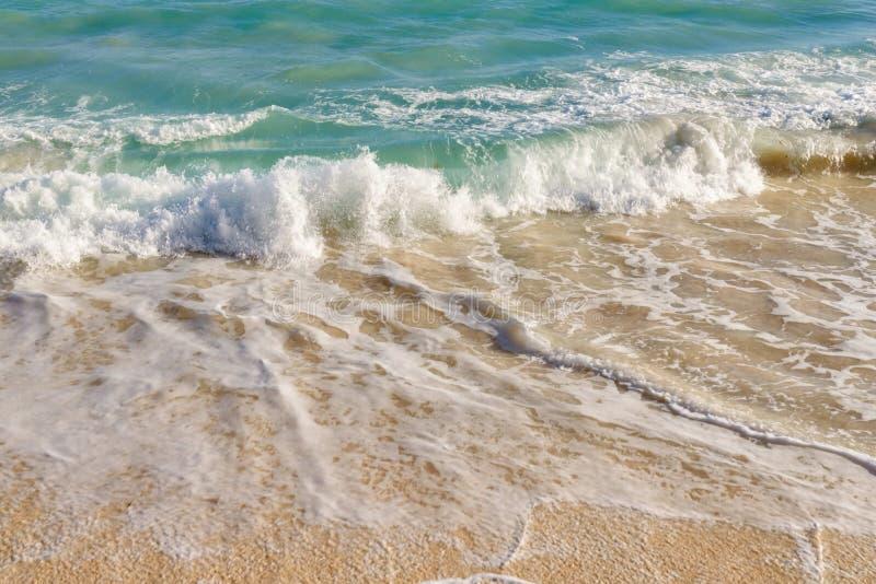 Fala na piaszczystej plaży zdjęcie royalty free