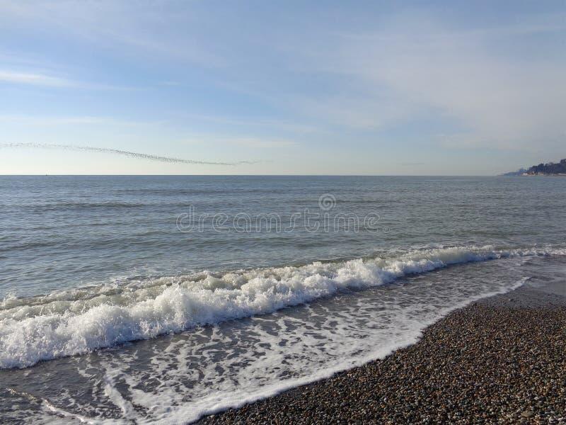 Fala na plaży, kierdel ptaki nad morzem obrazy royalty free
