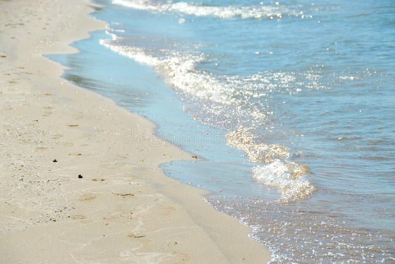 fala plażowa obrazy royalty free