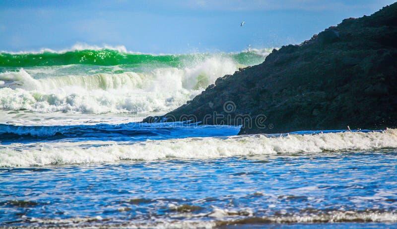 Fala rozbija na ląd, Bethels Wyrzucać na brzeg, Auckland, Nowa Zelandia zdjęcie royalty free