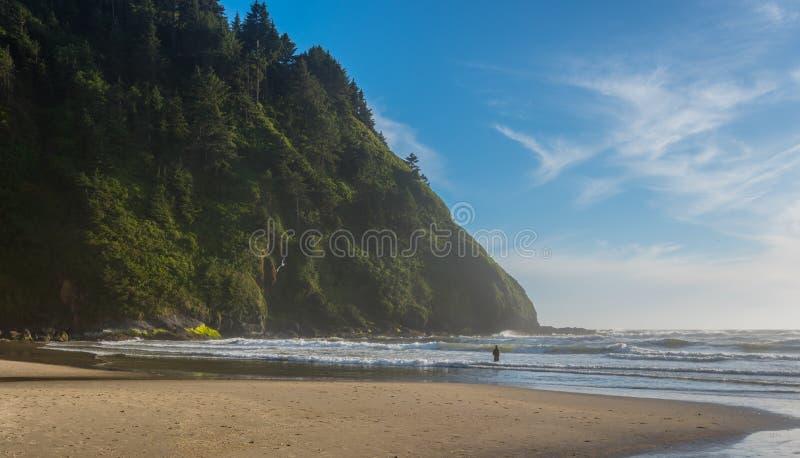 Fala trzask przy Pacyfik plażą zdjęcie stock