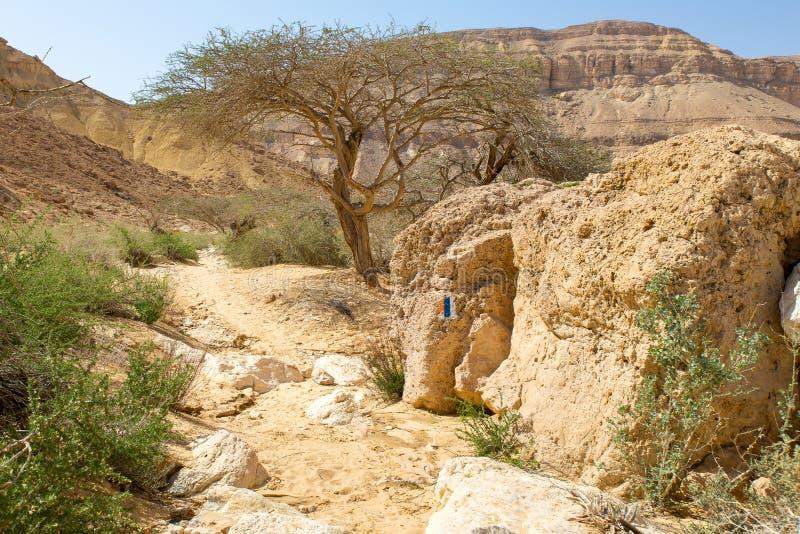 Falaise de pierre de signe d'inscription de traînée de désert image stock