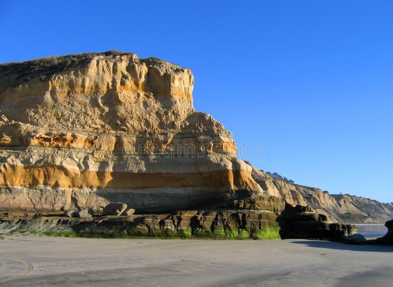 Falaises à la plage d'état de pins de Torrey, La Jolla, la Californie images libres de droits